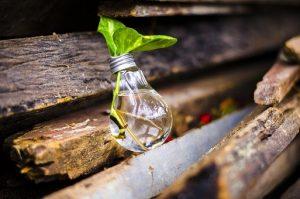 Ideas creativas para realizar un regalo con cosas reciclables.