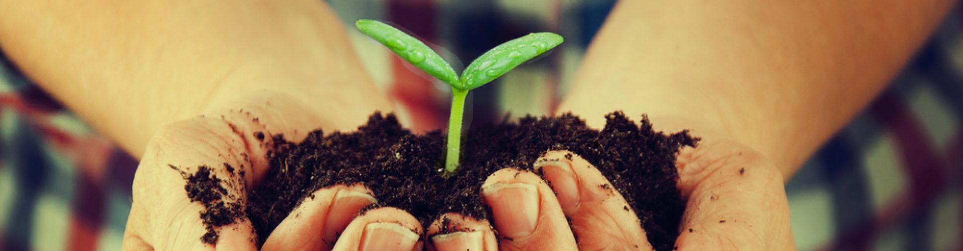 Natural News Revista de salud natural, ecología, medicina, deporte...